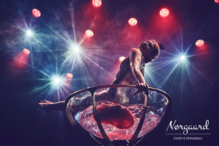 burlesqueshow_4